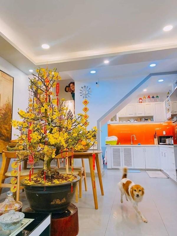 To mo khong gian nha Hoa hau Viet ngay Tet Canh Ty 2020-Hinh-4