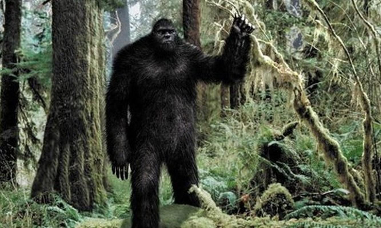 Chan dong: Quai vat Bigfoot la hau due cua nguoi ngoai hanh tinh?-Hinh-2