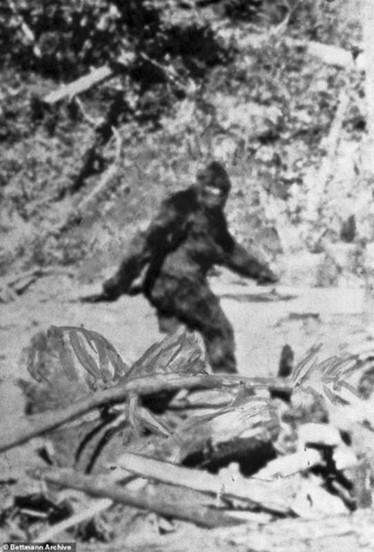 Chan dong: Quai vat Bigfoot la hau due cua nguoi ngoai hanh tinh?-Hinh-6