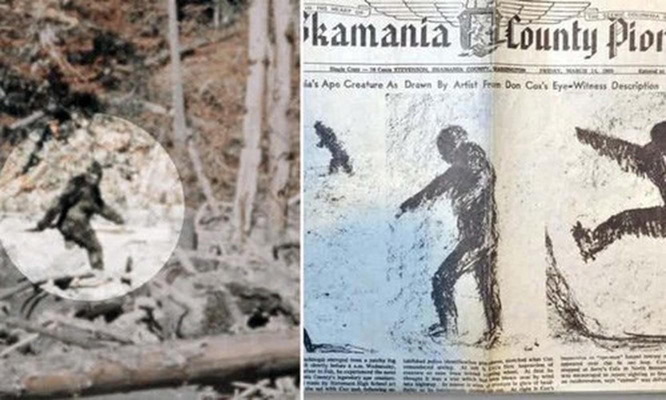 Chan dong: Quai vat Bigfoot la hau due cua nguoi ngoai hanh tinh?