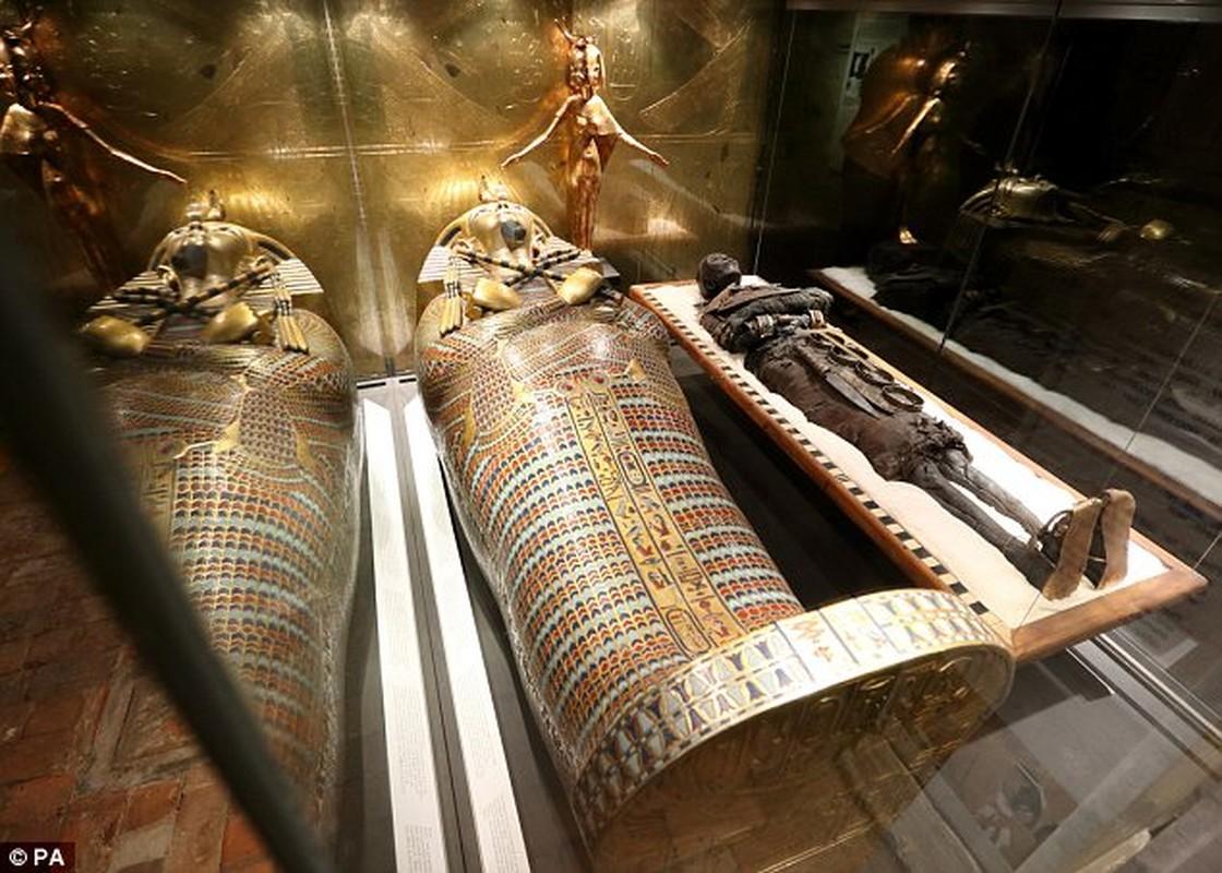 Pharaoh Ai Cap thuong duoc chon bao vat gi trong lang mo?-Hinh-5