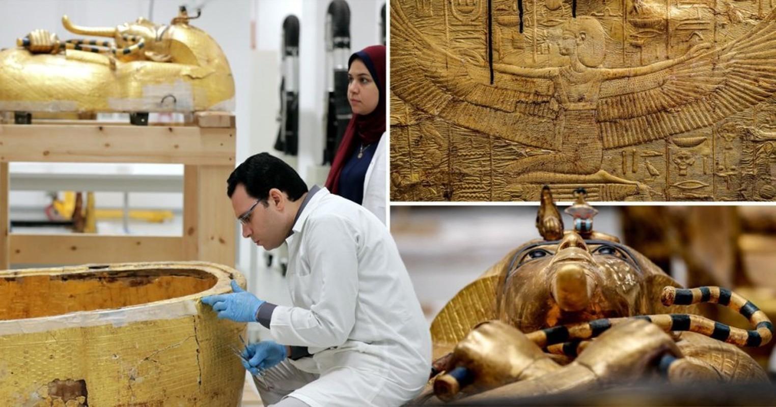 """Kinh ngac """"cao luong my vi"""" chat day trong mo pharaoh Ai Cap-Hinh-4"""