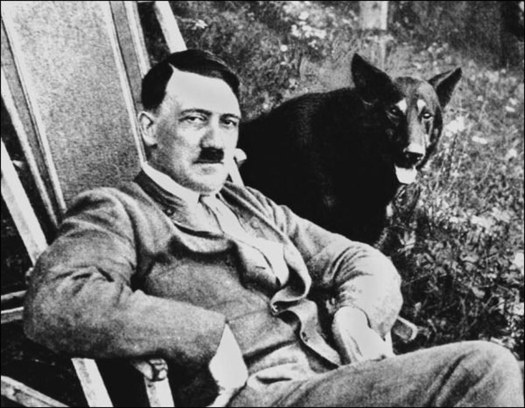 Ket cuc cua thu cung duoc trum phat xit Hitler yeu thich-Hinh-3