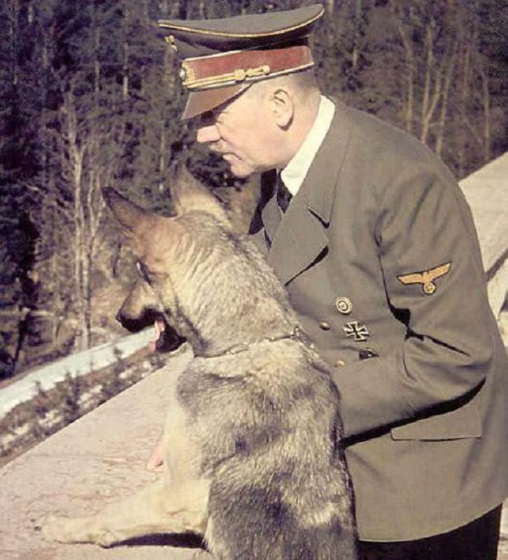 Ket cuc cua thu cung duoc trum phat xit Hitler yeu thich-Hinh-4