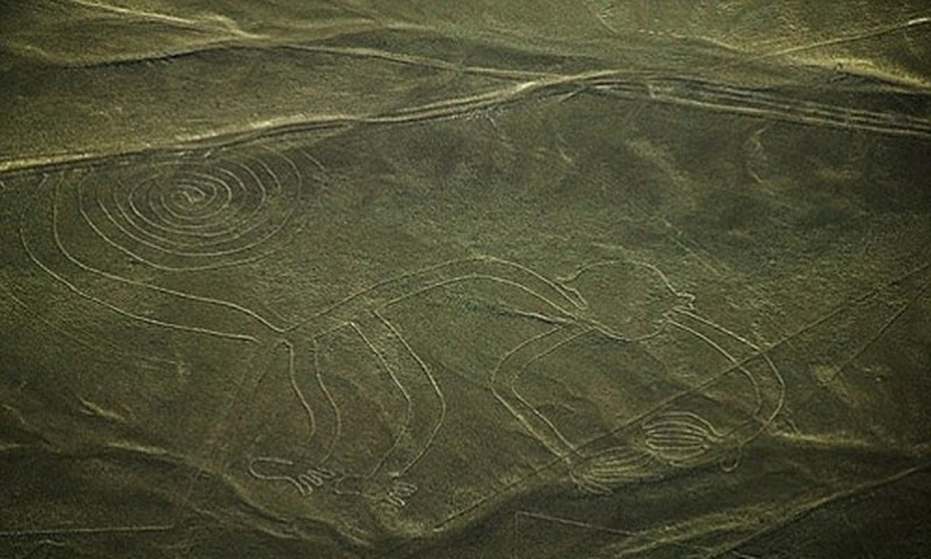 Nhung duong ke Nazca do nguoi ngoai hanh tinh de lai?-Hinh-2