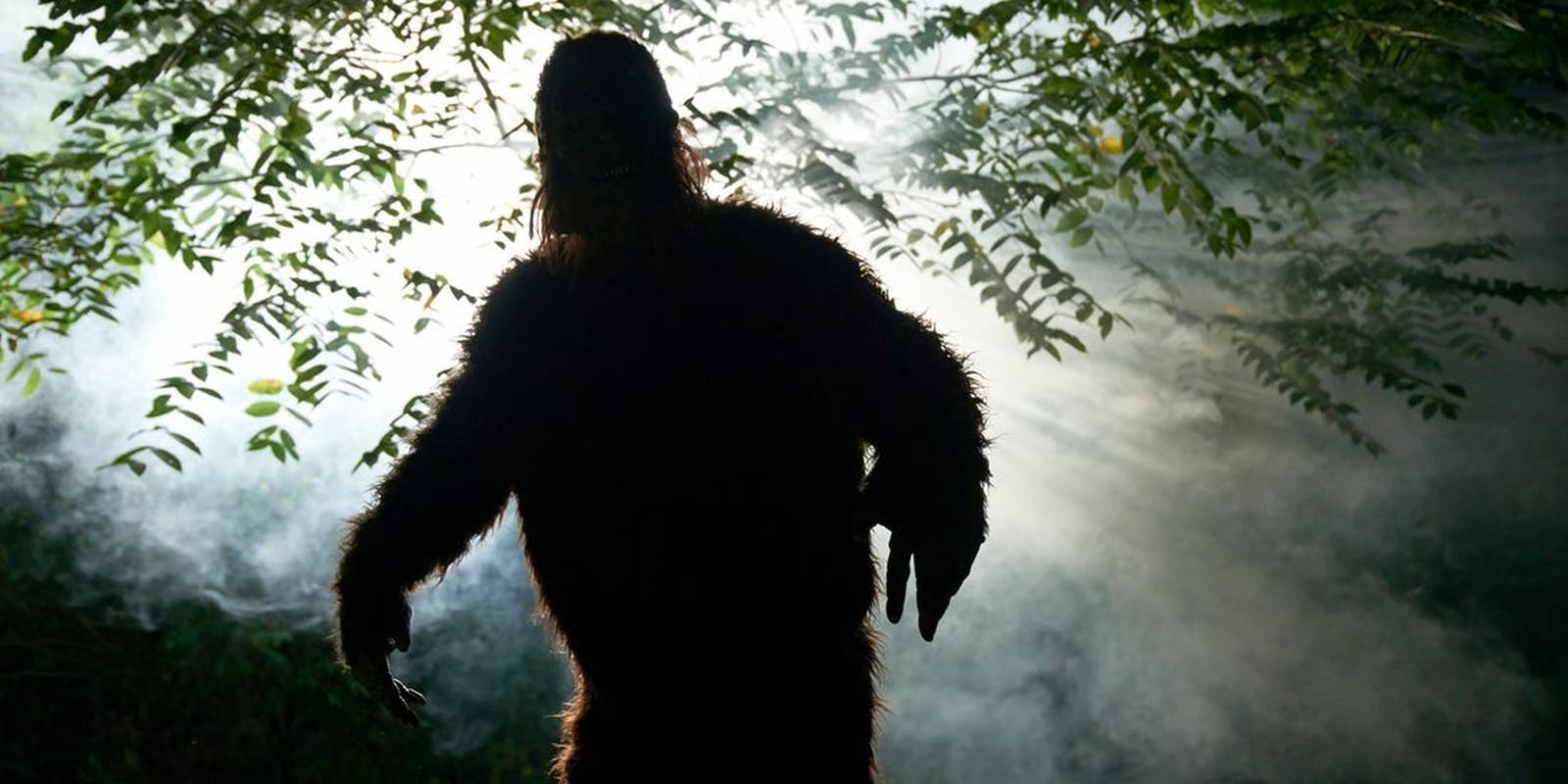 Vi sao con nguoi kho bat duoc quai vat Bigfoot?