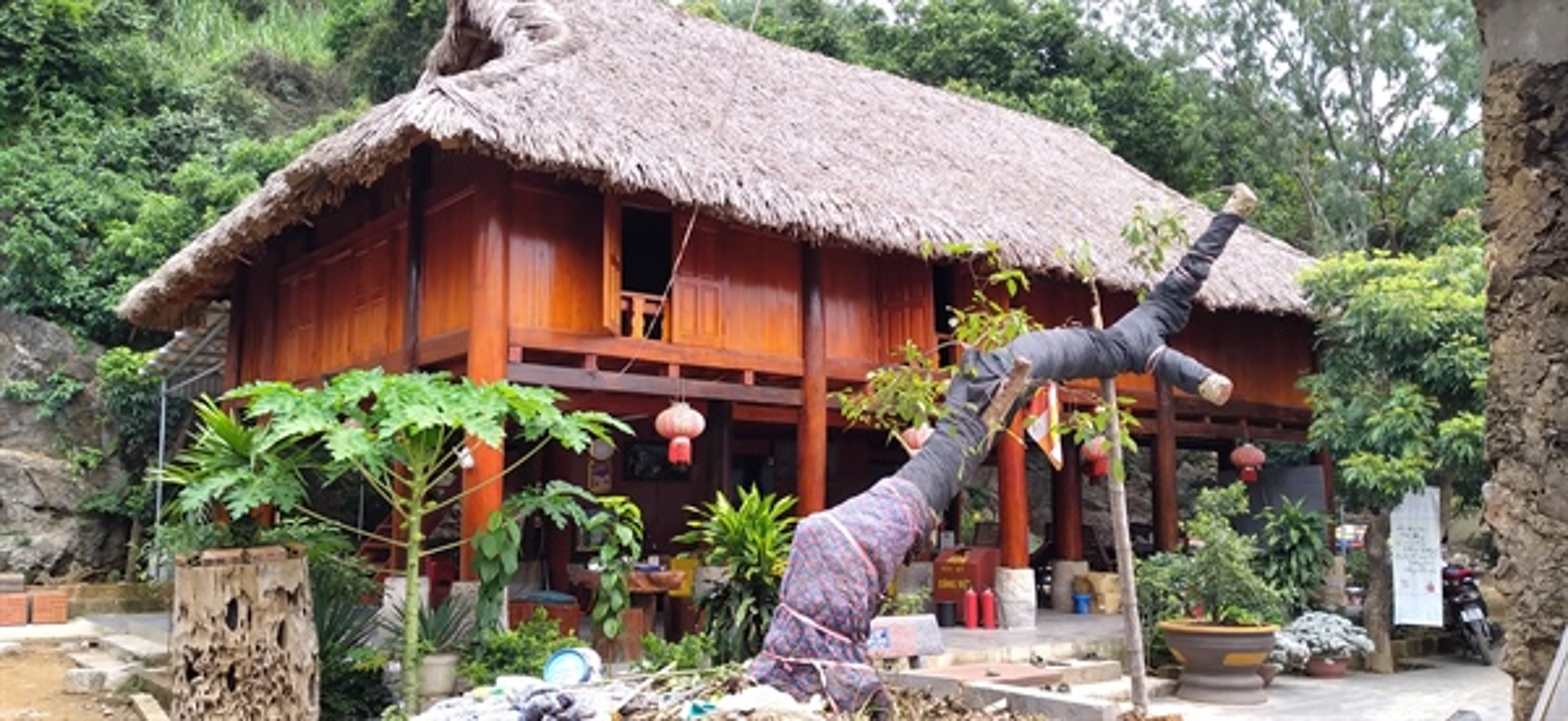 Doc dao bau vat co chua Bach Tuong Thanh Hoa-Hinh-7