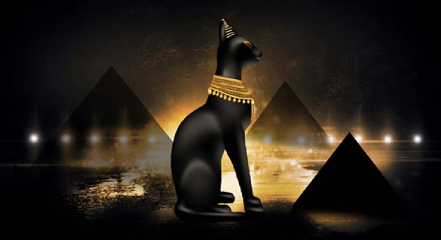 Vi sao Ai Cap co dai xu tu ke giet meo, pharaoh khong ngoai le?