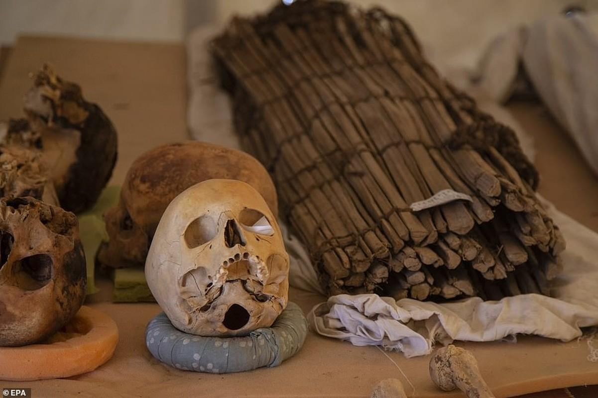 Phat hien 52 quan tai la trong den danh cho Nu hoang Ai Cap-Hinh-4