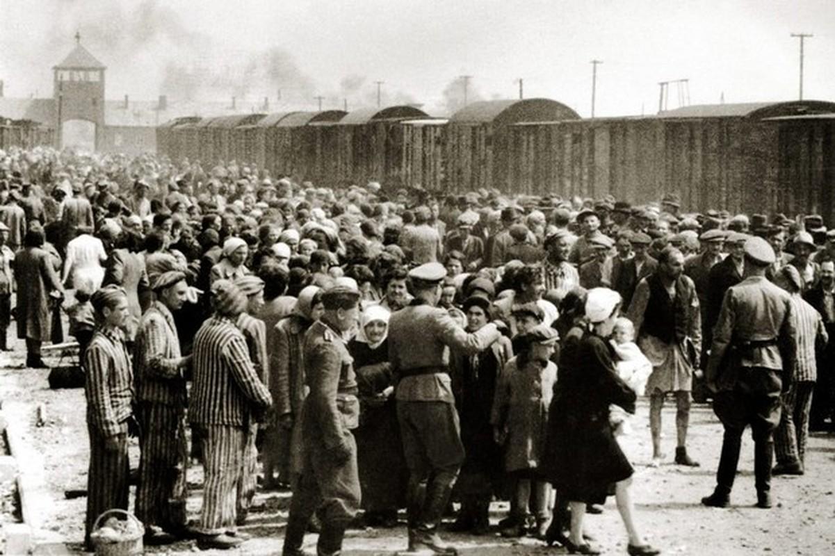 Toi ac rung ron cua Duc quoc xa tai Auschwitz phoi bay nam 1945-Hinh-10