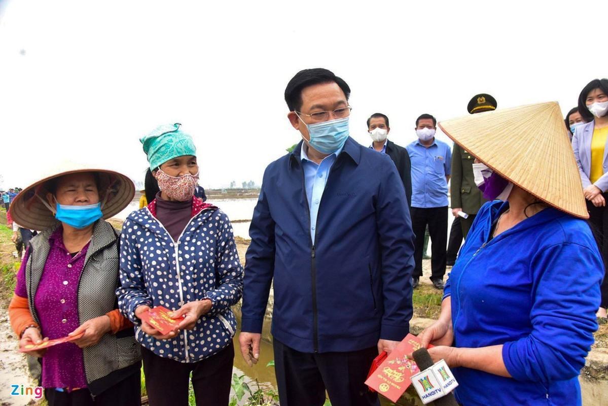 Bi thu, Chu tich Ha Noi xuong ruong cay lua cung nong dan-Hinh-5