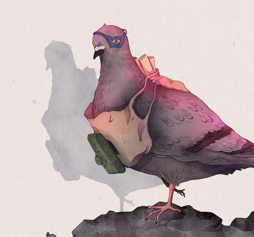 "Phi thuong chim bo cau tro thanh ""nguoi hung"" trong chien tranh-Hinh-5"