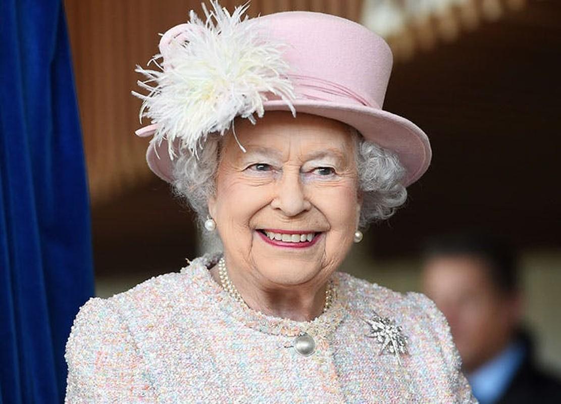 Choang ngop so dong vat Nu hoang Anh Elizabeth II so huu-Hinh-4