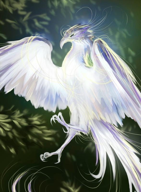 Bi an loai chim than long trang nhu tuyet, chua duoc bach benh-Hinh-6