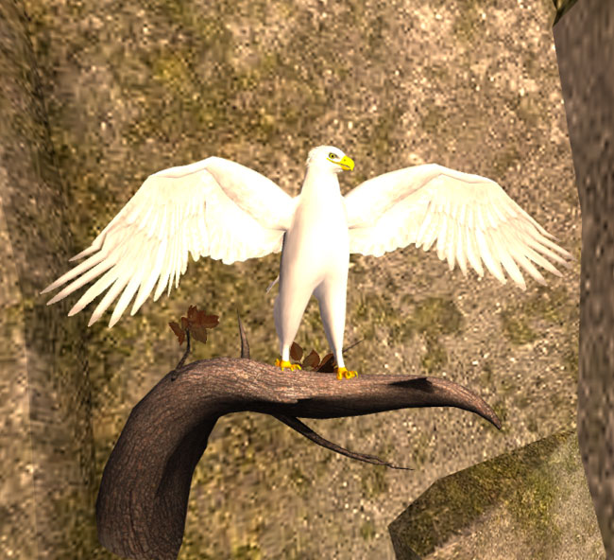 Bi an loai chim than long trang nhu tuyet, chua duoc bach benh-Hinh-9