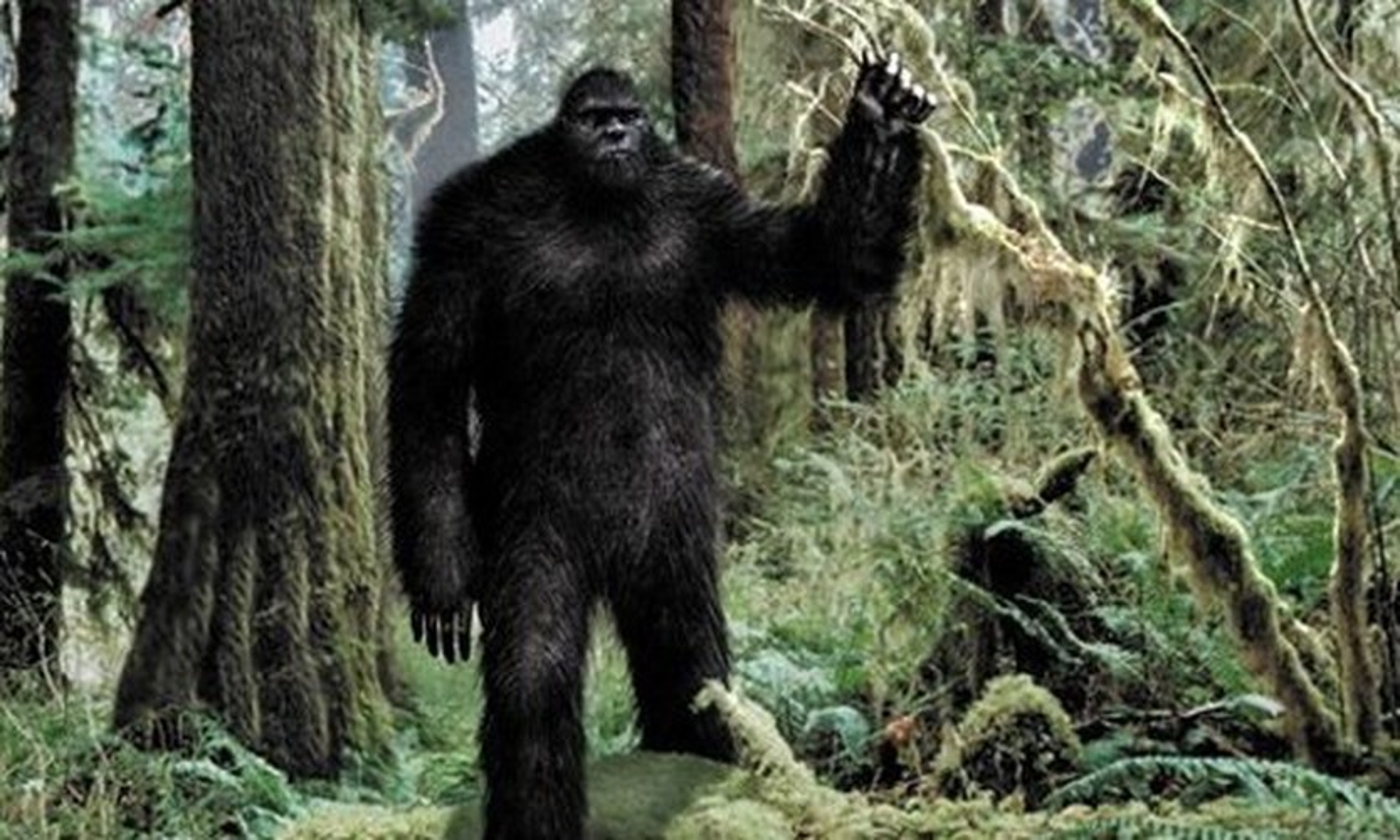 Doan video ve sinh vat la nghi la quai vat bi an Bigfoot-Hinh-5