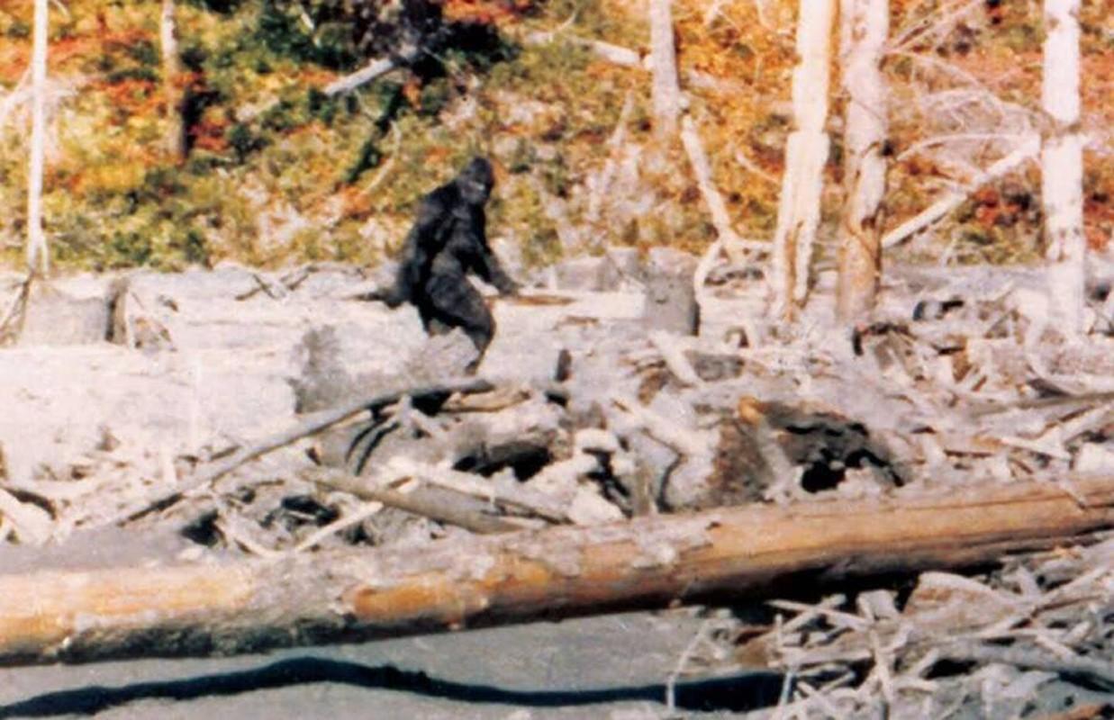 Doan video ve sinh vat la nghi la quai vat bi an Bigfoot