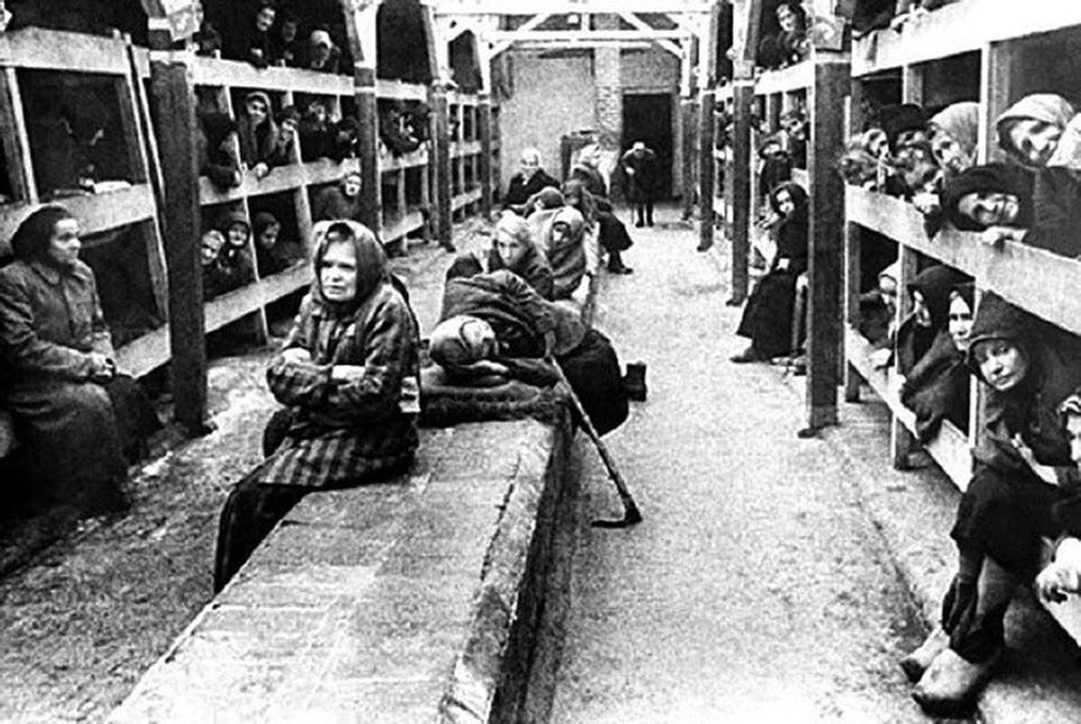 Nu ho sinh nguoi Ba Lan cuu song nhieu tre em o trai Auschwitz-Hinh-10