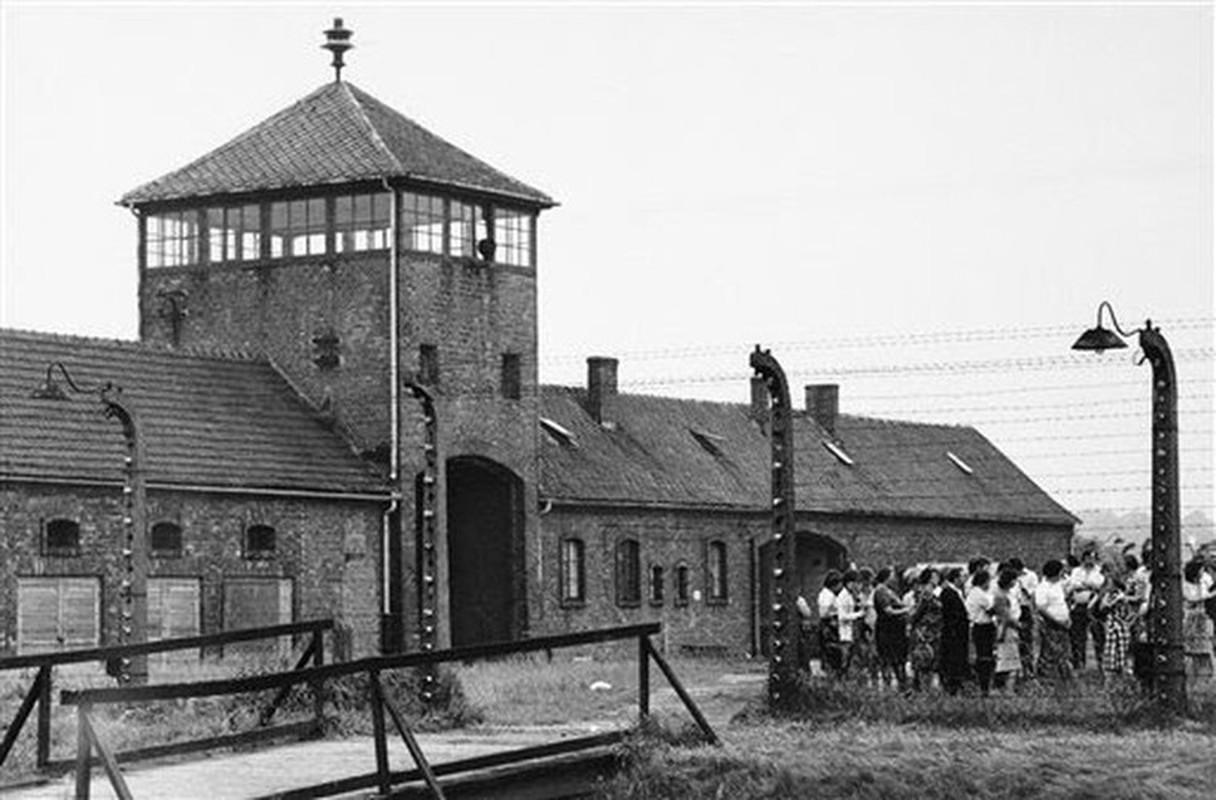 Nu ho sinh nguoi Ba Lan cuu song nhieu tre em o trai Auschwitz-Hinh-2