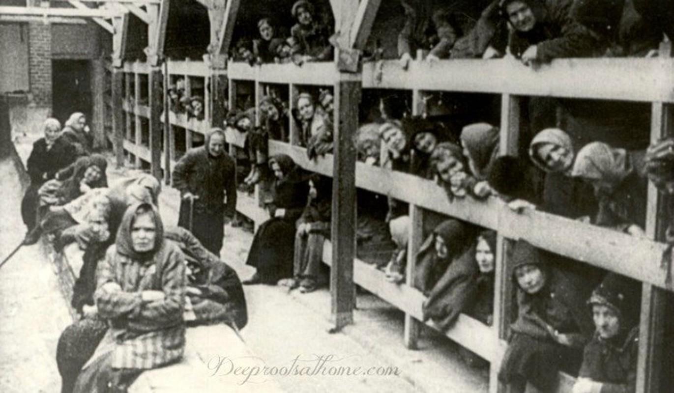 Nu ho sinh nguoi Ba Lan cuu song nhieu tre em o trai Auschwitz-Hinh-3