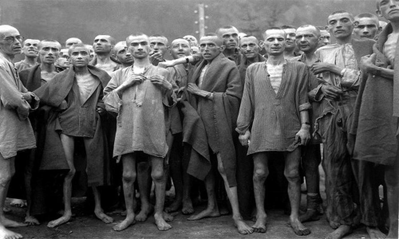 Nu ho sinh nguoi Ba Lan cuu song nhieu tre em o trai Auschwitz-Hinh-7