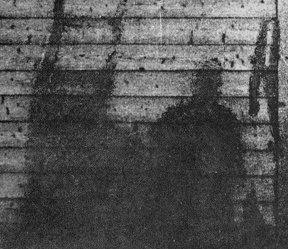Rung ron nhung bong den sau vu no bom hat nhan o Hiroshima 1945-Hinh-7