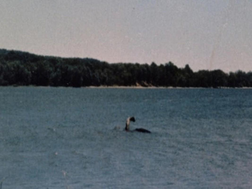 Cuc nong: Su that ve quai vat ho Loch Ness da duoc phoi bay?-Hinh-10