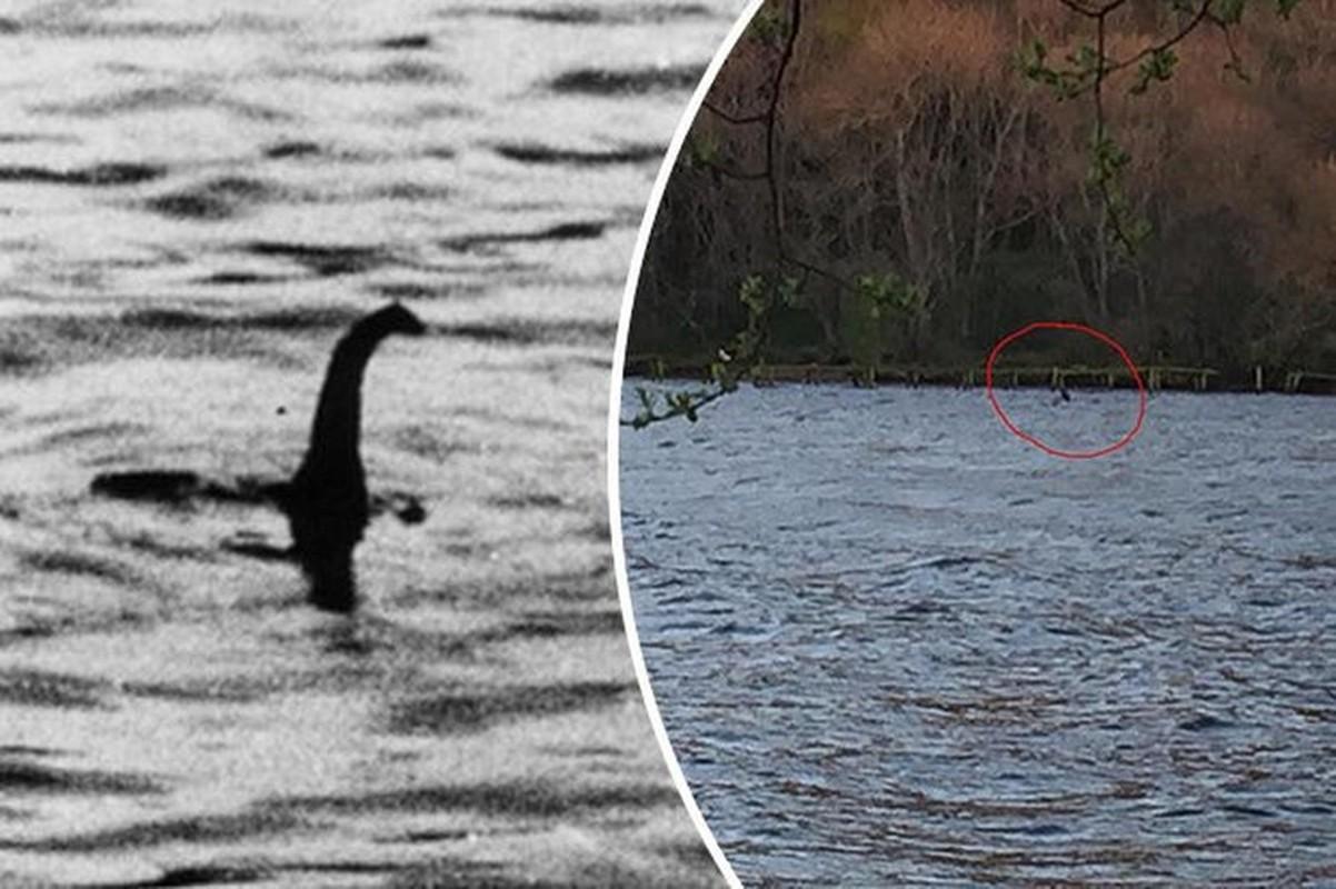 Cuc nong: Su that ve quai vat ho Loch Ness da duoc phoi bay?-Hinh-4