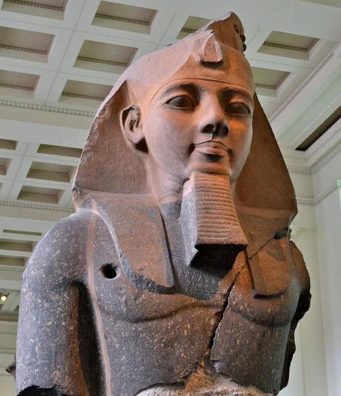 Cuc soc dung mao that cua pharaoh dau tien duoc cap... ho chieu-Hinh-3