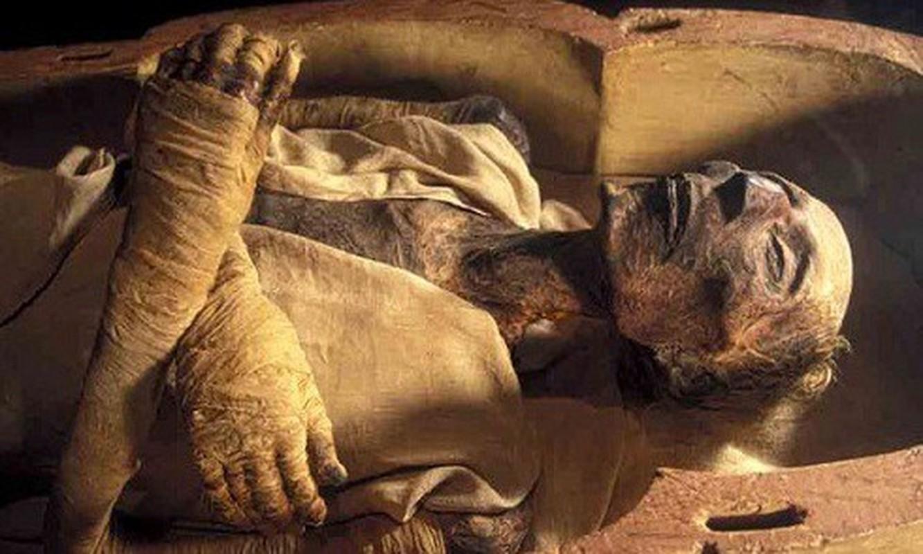 Cuc soc dung mao that cua pharaoh dau tien duoc cap... ho chieu-Hinh-4