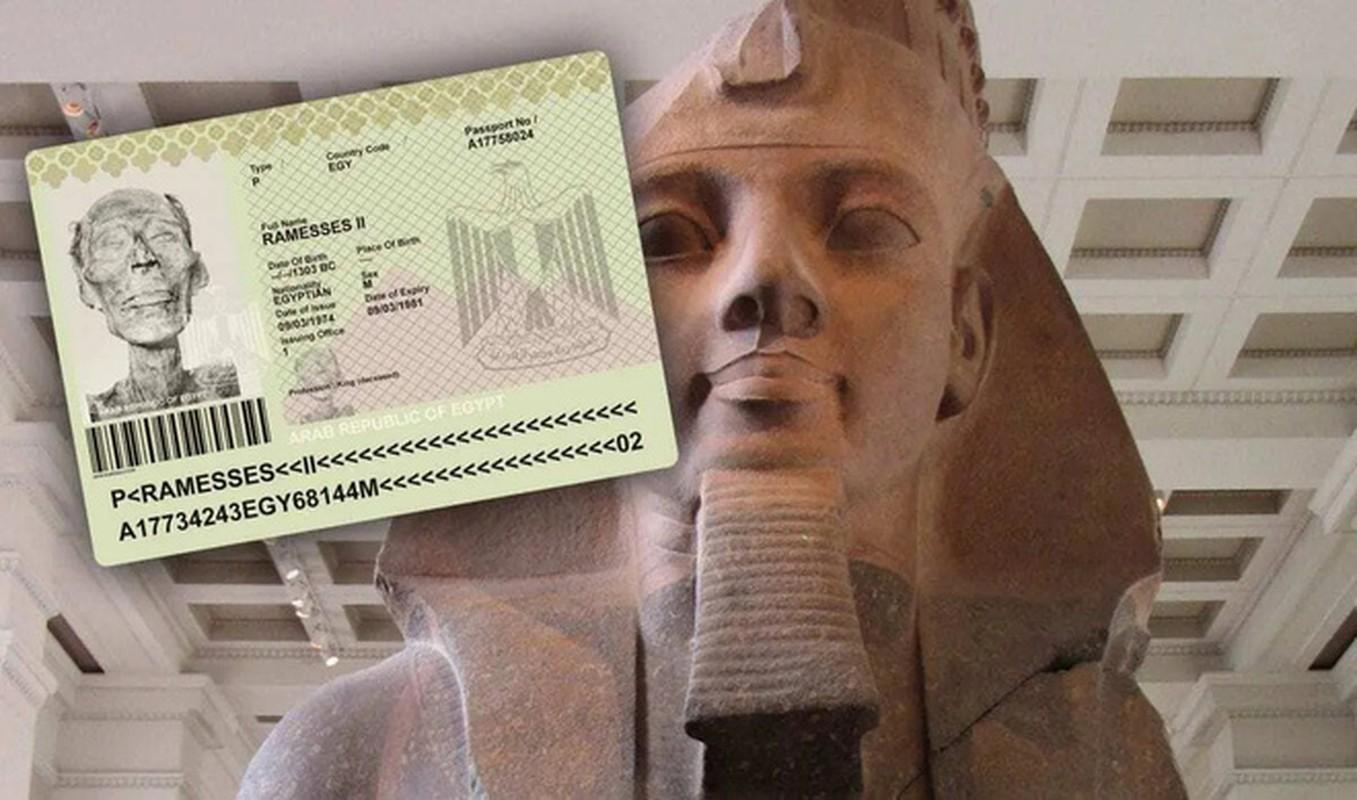 Cuc soc dung mao that cua pharaoh dau tien duoc cap... ho chieu-Hinh-7