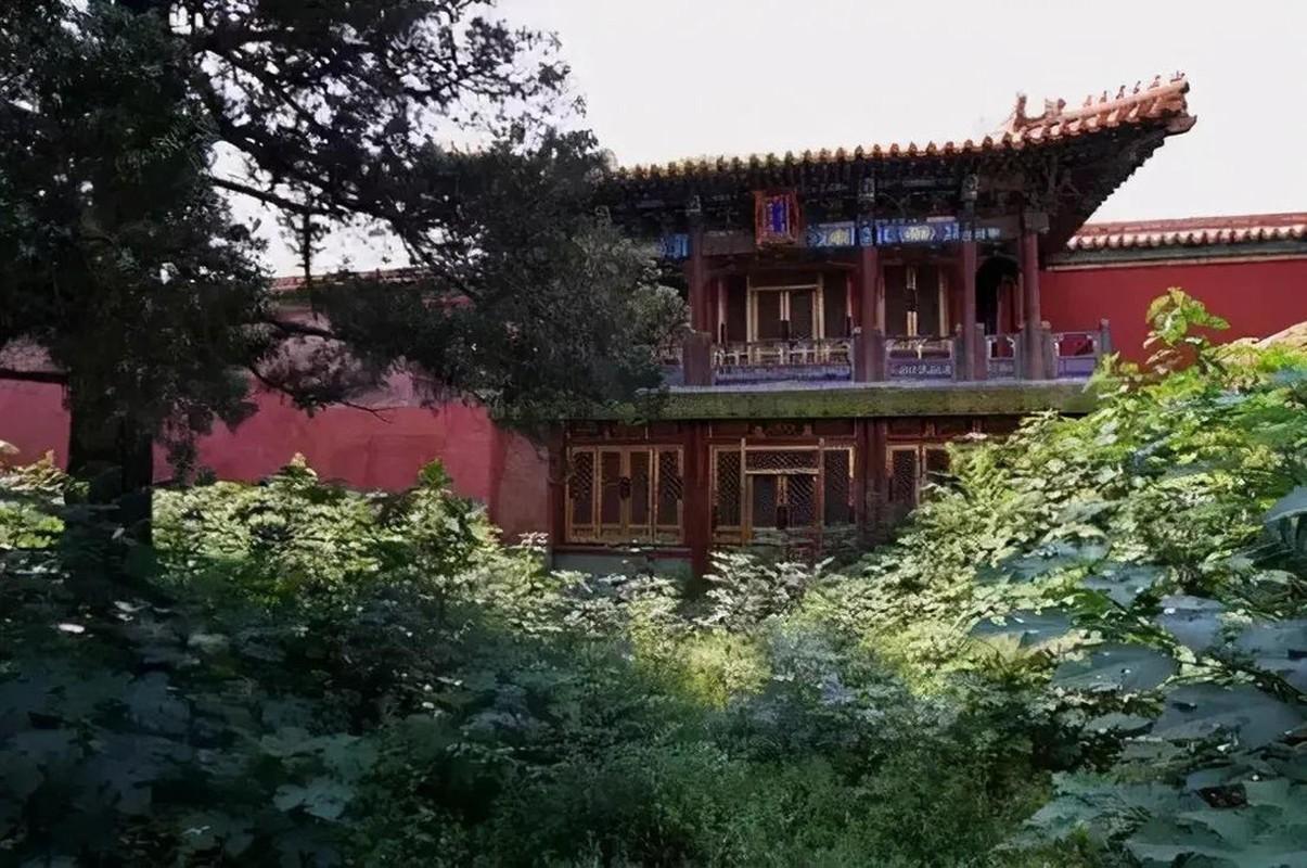 Giai ma 3 cung dien bat kha xam pham trong Tu Cam Thanh-Hinh-10