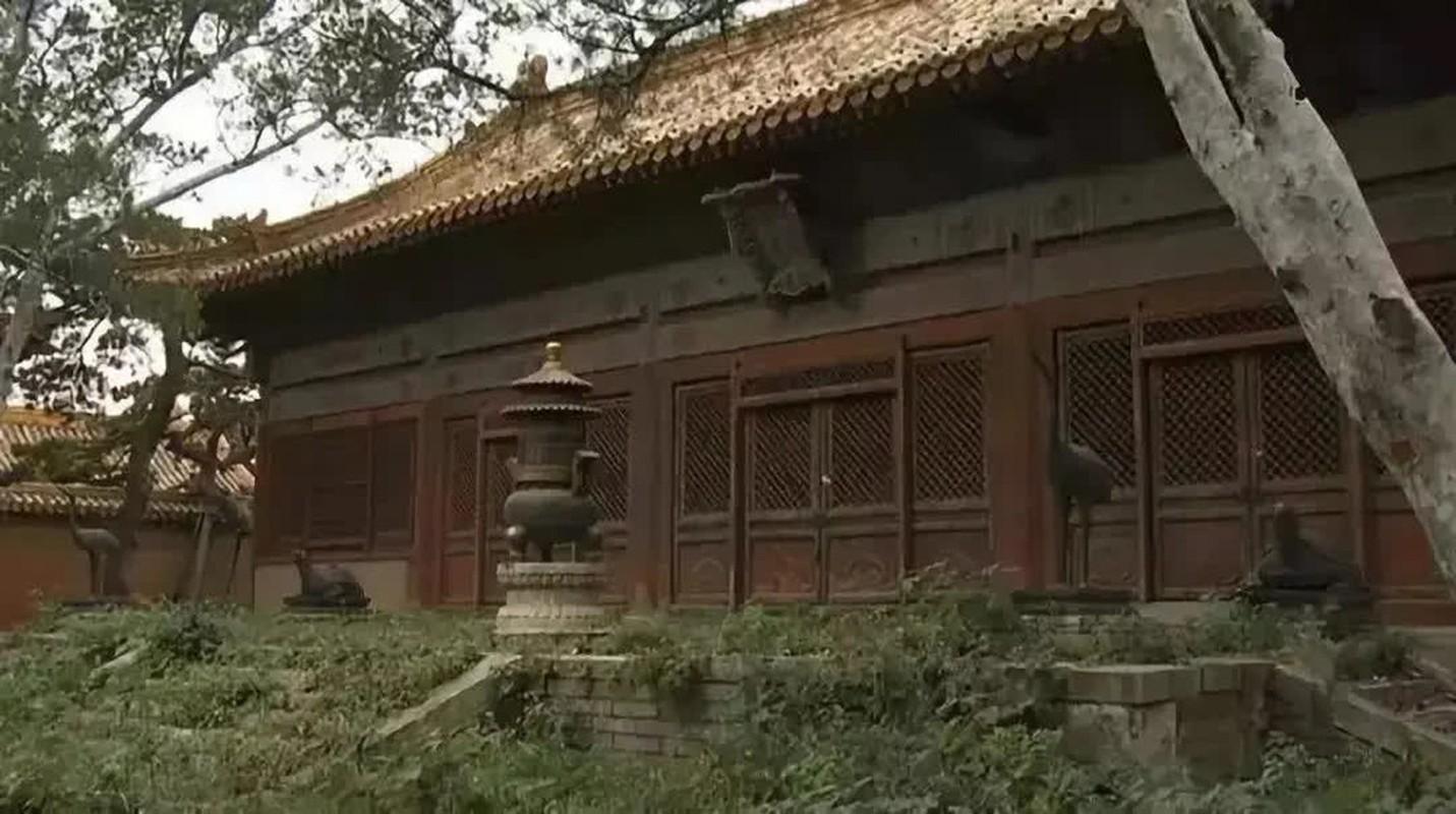 Giai ma 3 cung dien bat kha xam pham trong Tu Cam Thanh-Hinh-8