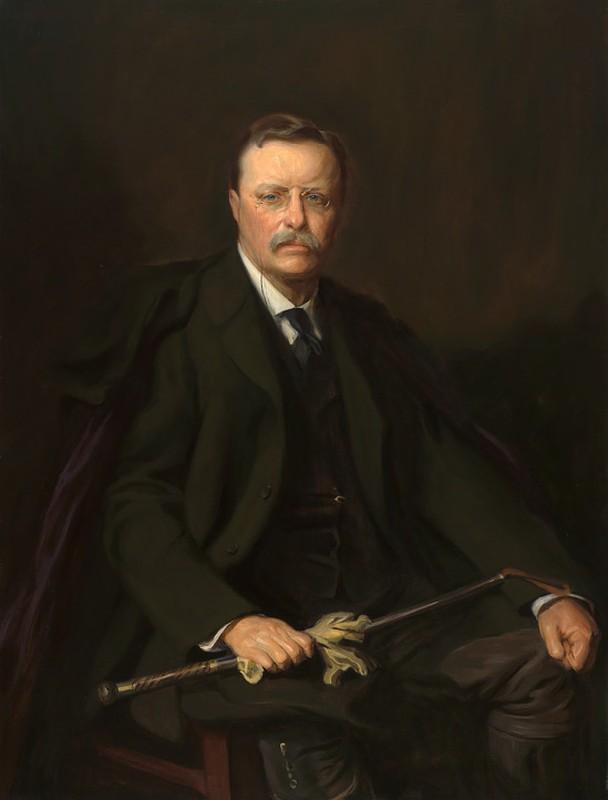 Cuc soc ly do Tong thong My Theodore Roosevelt suyt mu mot mat-Hinh-10