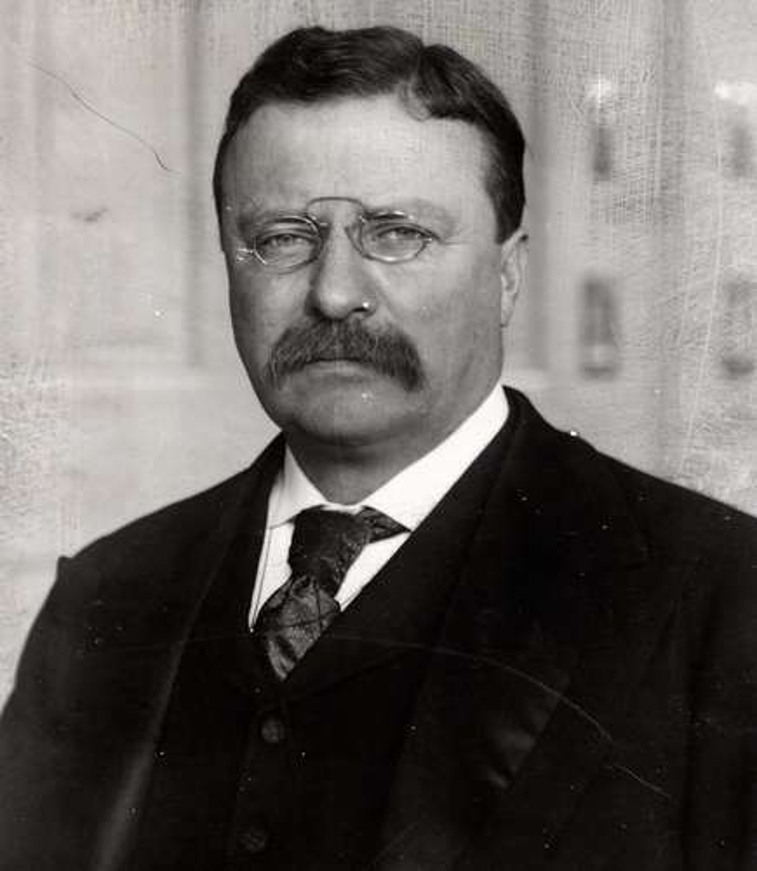 Cuc soc ly do Tong thong My Theodore Roosevelt suyt mu mot mat-Hinh-5