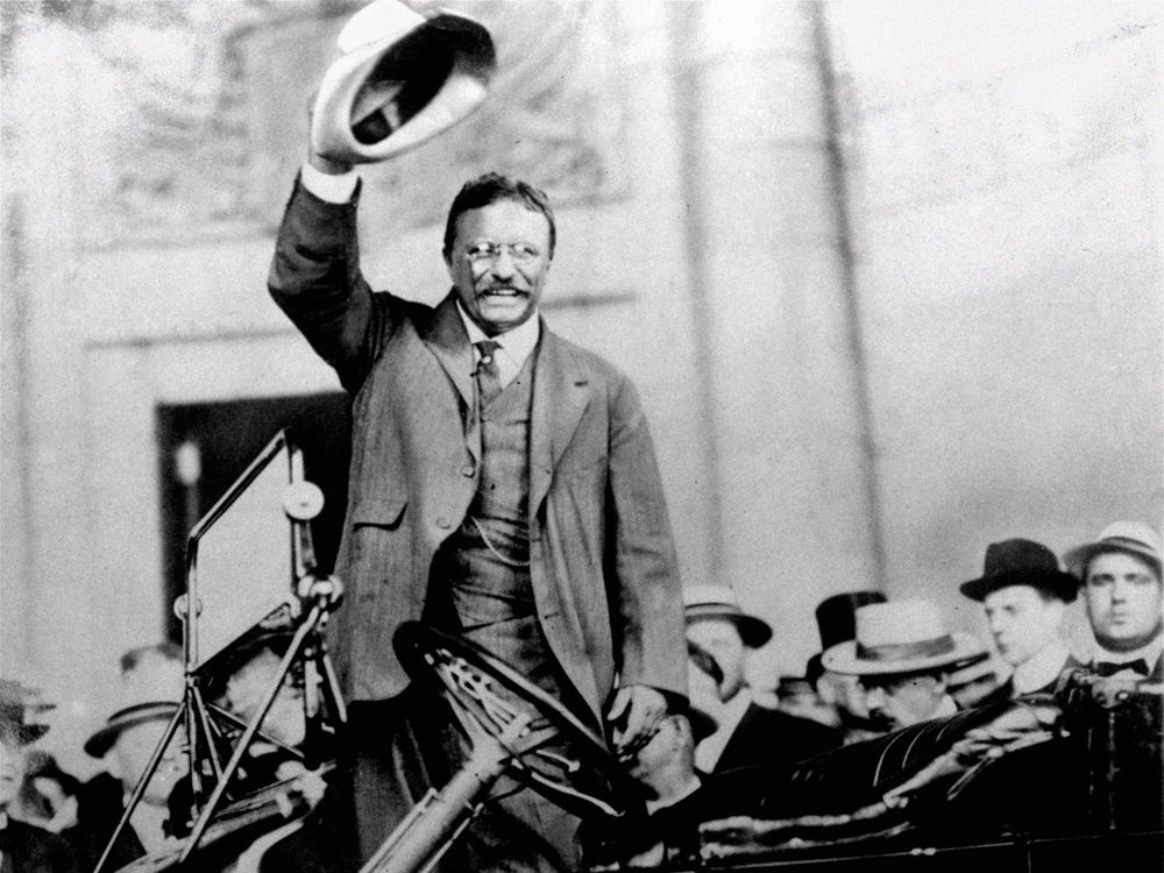 Cuc soc ly do Tong thong My Theodore Roosevelt suyt mu mot mat-Hinh-7