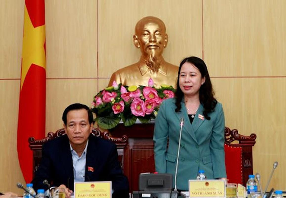 Ba Vo Thi Anh Xuan tai dac cu Pho chu tich nuoc-Hinh-5