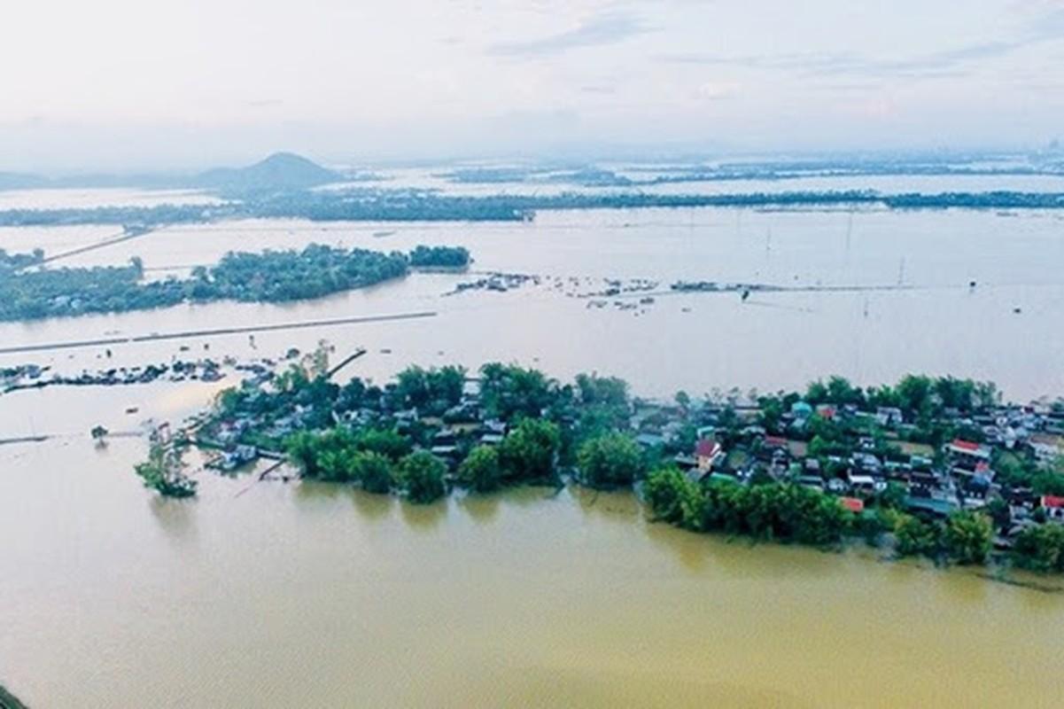Cuon sach ve cuoc doi nhieu tranh cai cua tuong giet giac Duong Tam Kha-Hinh-12