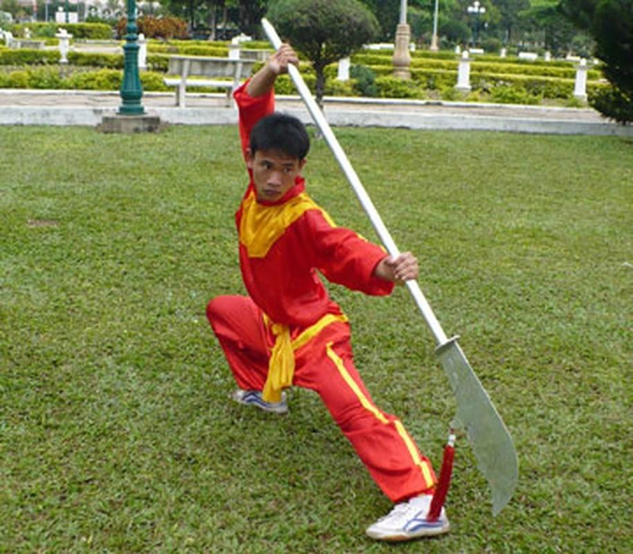 Chan dung ho tuong trieu Tay Son lung lay voi loi long dao-Hinh-13