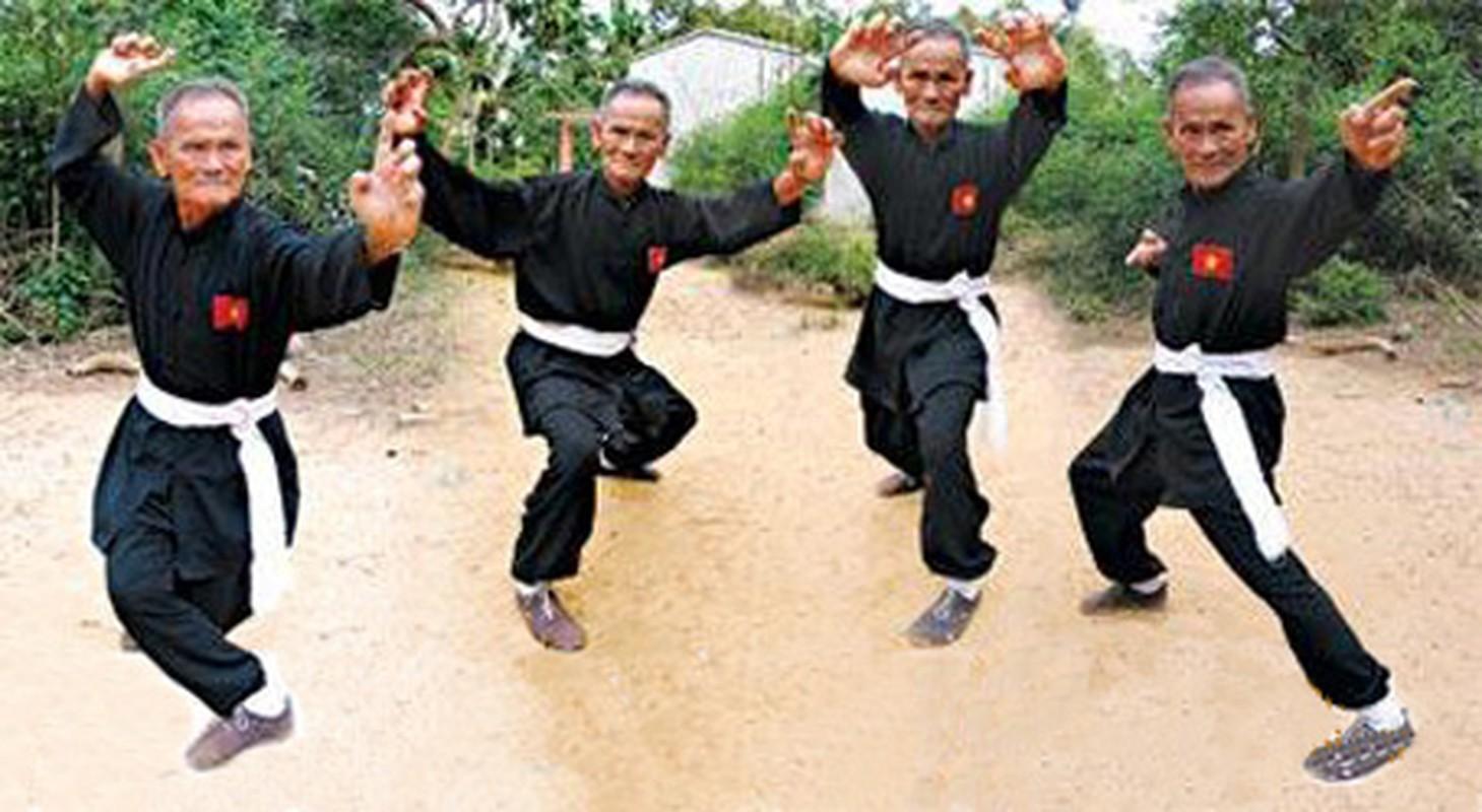 Khong noi tieng nhu anh trai Nguyen Hue, Nguyen Lu co tai gi?-Hinh-4