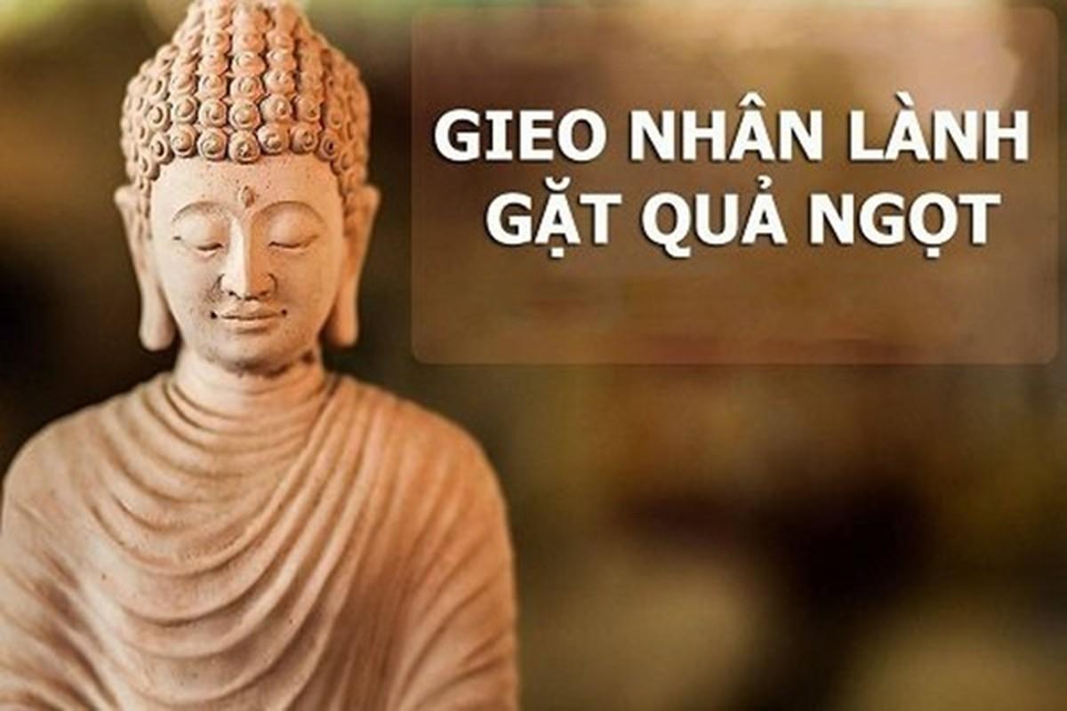 """""""Ben bo sinh tu"""": Hieu sao ve cai chet, vong luan hoi trong Dao Phat?-Hinh-12"""