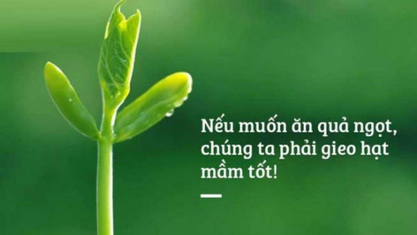 """""""Ben bo sinh tu"""": Hieu sao ve cai chet, vong luan hoi trong Dao Phat?-Hinh-8"""