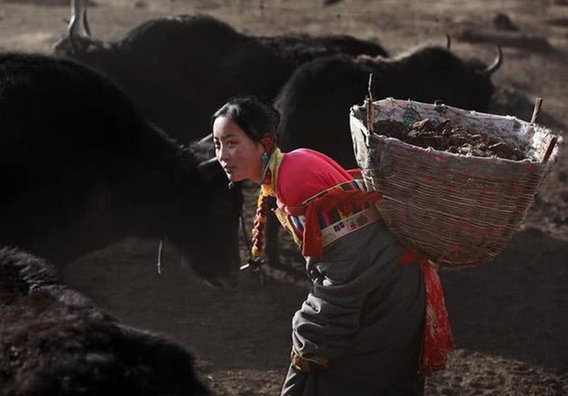 Bi mat giau kin o Tay Tang: Nguoi dan co loai gene dac biet-Hinh-13
