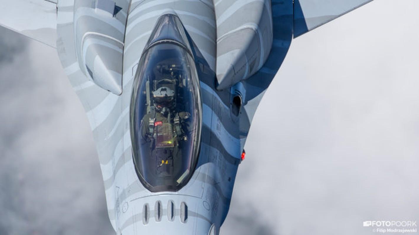 An tuong manh may bay chien dau Su-22 sat canh cung F-16-Hinh-5