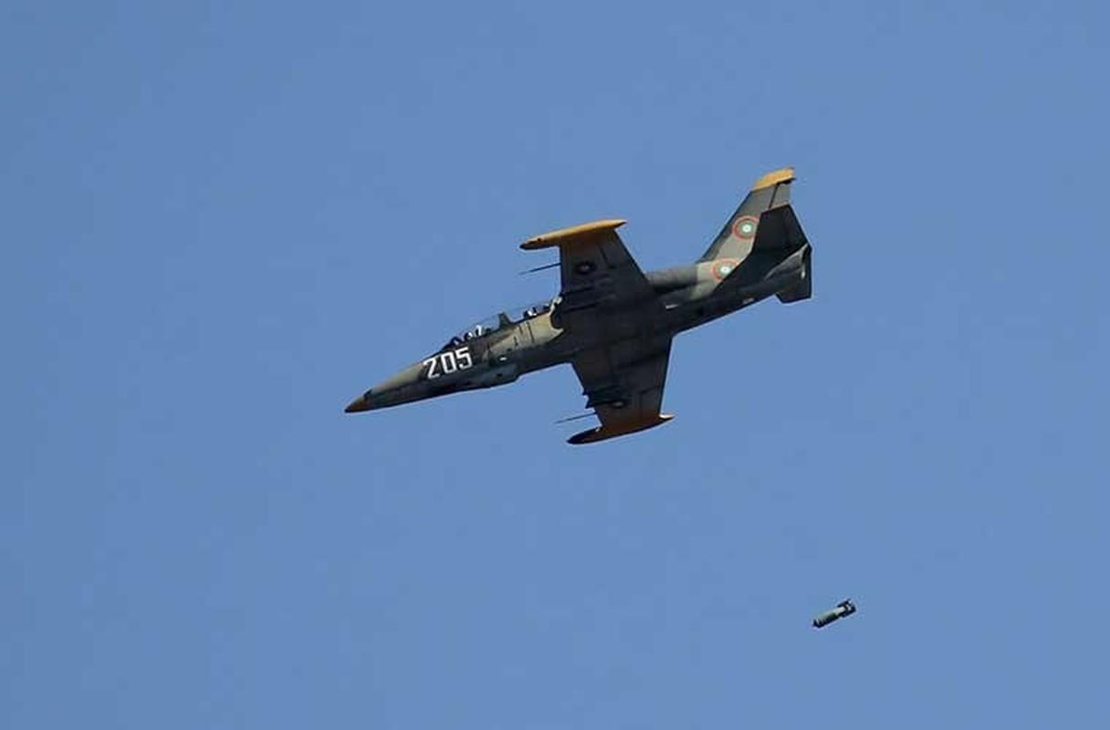 Them mot bat ngo, Viet Nam tu dai tu may bay L-39-Hinh-10