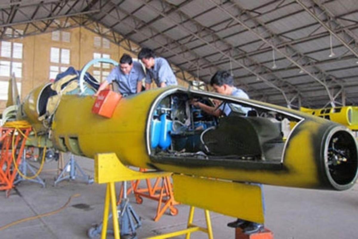 Them mot bat ngo, Viet Nam tu dai tu may bay L-39-Hinh-2
