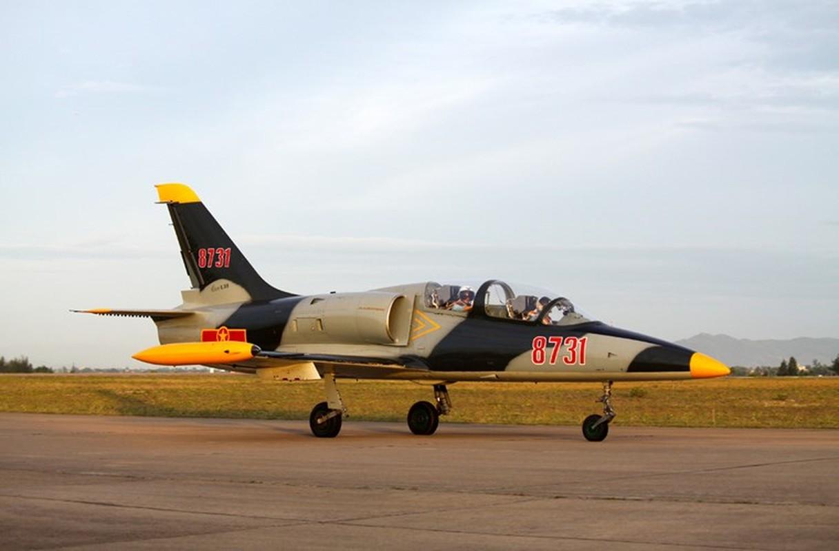 Them mot bat ngo, Viet Nam tu dai tu may bay L-39-Hinh-6