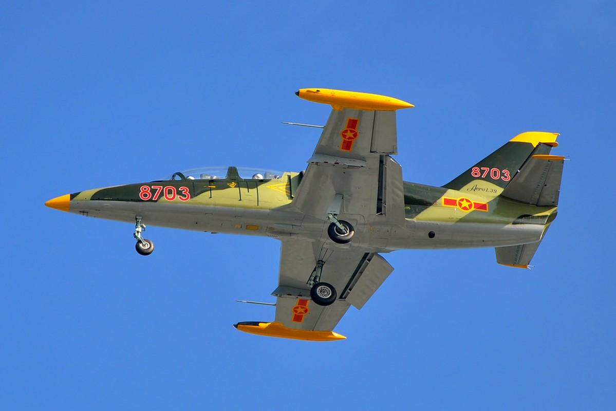 Them mot bat ngo, Viet Nam tu dai tu may bay L-39-Hinh-7