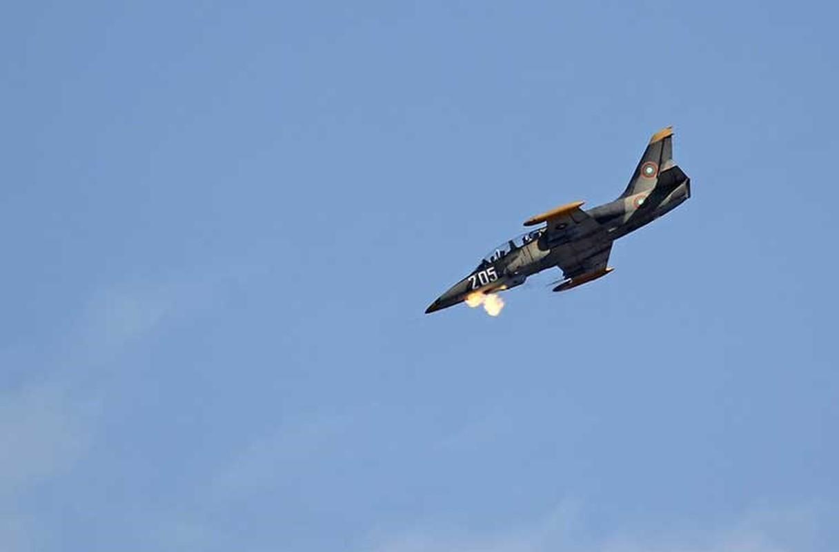 Them mot bat ngo, Viet Nam tu dai tu may bay L-39-Hinh-8