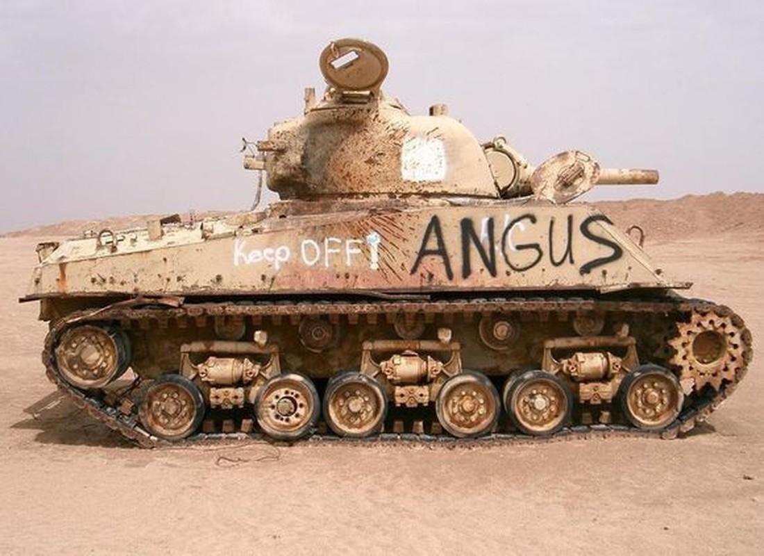 Ngac nhien tot do kho tang, phao thoi CTTG 2 o Iraq-Hinh-5